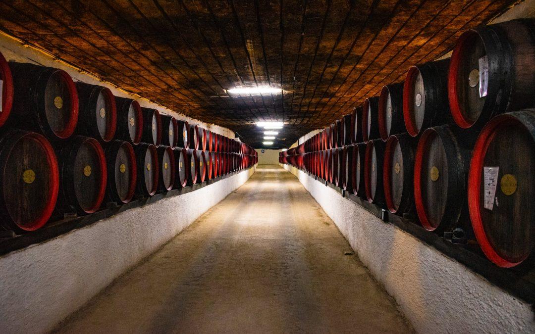 Együtt a bajban: a Kárpátok-bora program továbbra is várja a borászok jelentkezését
